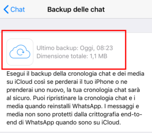 come fare Backup WhatsApp iPhone